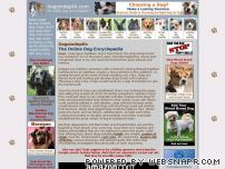 dogsindepth.com - The Online Dog Encyclopedia - dogsindepth.com