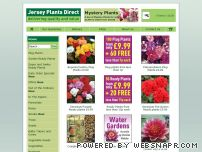 jerseyplantsdirect.com - Jersey Plants Direct - Bedding Plants, Perennials, Shrubs all with FREE delivery.